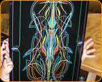 Pinstriping Master Pinstriper Casey Kennell